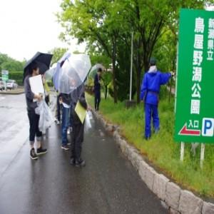 樹木の観察会(新潟 鳥屋野潟公園)